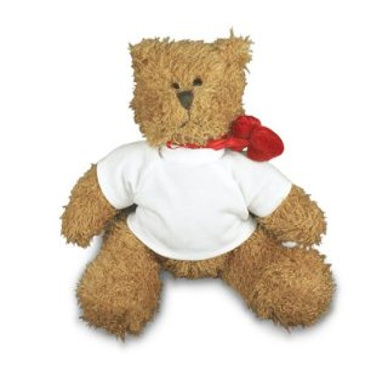 Teddy Hardy mit T-Shirt